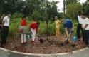 Presiden-Indonesia-Jokowi-dan-PM-Singapura-menanam-pohon-Oak-Sunda-di-Kebun-Raya-Singapura.jpg