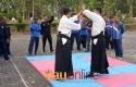 Seni-beladiri-Aikido.jpg