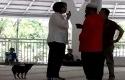Suzethe-Margaret-membawa-anjing-ke-Mesjid.jpg