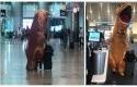 T-Rex-bandara-miami.jpg