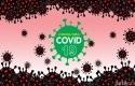 Virus-corona51.jpg