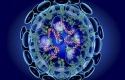 Virus-corona60.jpg