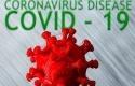 Virus-corona63.jpg