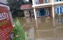 buluh-cina-banjir.jpg
