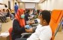 donor-darah-RAPP.jpg