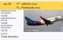 pesawat-sriwijaya-air5.jpg