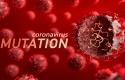 virus-corona-india.jpg